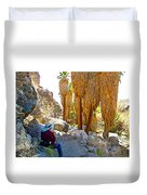 Rest Stop In Andreas Canyon Trail In Indian Canyons-ca Duvet Cover