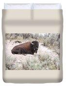 Resting Bison Duvet Cover