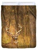 Resting White-tailed Deer Buck Duvet Cover