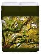 Resurrection Fern Duvet Cover by Carla Parris