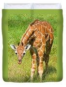 Reticulated Giraffe 6 Week Old Calf Duvet Cover