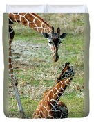 Reticulated Giraffe With Calf Duvet Cover