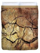 Rhinoceros From Chauve Cave Duvet Cover