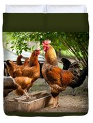 Rhode Island Red Chickens And Wooden Feeder  Duvet Cover