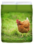 Rhode Island Red Chicken Duvet Cover