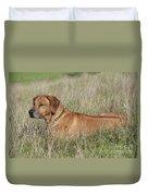 Rhodesian Ridgeback Dog Duvet Cover