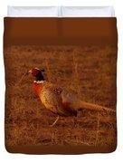 Ring Neck Pheasant  Duvet Cover