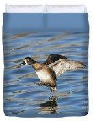 Ring-necked Duck Landing Duvet Cover