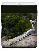 Ring-tailed Lemur Resting Madagascar Duvet Cover