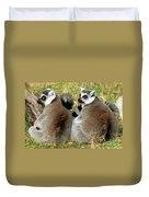Ring-tailed Lemurs Lemur Catta Duvet Cover
