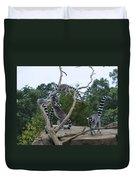 Ring Tailed Lemurs Playing Duvet Cover