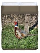 Ringneck By A Fence Post Duvet Cover