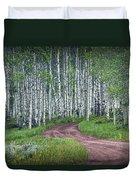 Road Through A Birch Tree Grove Duvet Cover