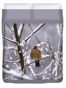 Robin In Snow Duvet Cover