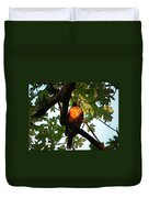 Robin Waiting Duvet Cover