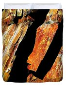 Rock Art 21 Duvet Cover by ABeautifulSky Photography