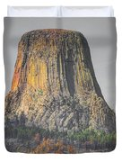 Rock Candy Duvet Cover by Anthony Wilkening