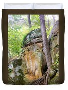 Rock Formation Wildcat Den State Park Duvet Cover