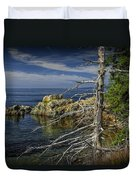 Rock Formations And Trees On The Shoreline In Acadia National Park Duvet Cover