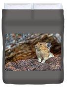 Rock Rabbit Duvet Cover
