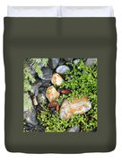 Rocks And Lichen Duvet Cover