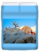 Rocks In Sun And Shade Along Barker Dam Trail In Joshua Tree Np-ca- Duvet Cover