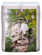 Rocky Cliff Wildcat Den Muscatine Ia 1 Duvet Cover