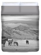 Rocky Mountain Country Morning Bw Duvet Cover
