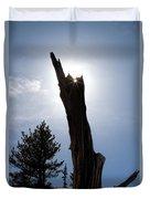Rocky Mountain Obelisk Duvet Cover