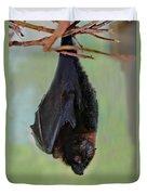 Rodrigues Flying Fox Duvet Cover