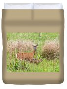 Roe Deer Capreolus Capreolus With Two Fawns Duvet Cover