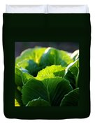Romaine Study Duvet Cover by Angela Rath