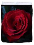 Romancing The Rose  Duvet Cover