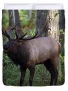 Roosevelt Elk Bugling Duvet Cover