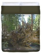 Roots Duvet Cover by Barbara Snyder
