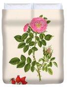 Rose Eglanteria Duvet Cover