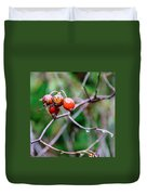 Rose Hip Wet Duvet Cover