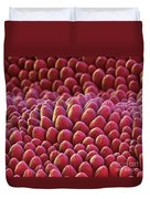 Rose Petal Surface Sem Duvet Cover