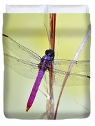 Roseate Skimmer Dragonfly Duvet Cover by Al Powell Photography USA