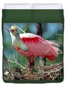 Roseate Spoonbill Adult In Breeding Duvet Cover
