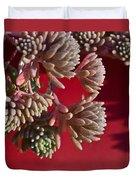 Rosy Sedum 5 Duvet Cover