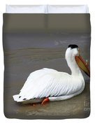 Rough Billed Pelican Duvet Cover