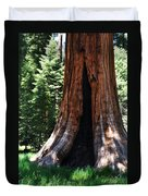 Round Meadow Giant Sequoia Portrait Duvet Cover