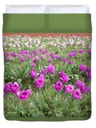 Rows Of Pink And Purple Tulip Flowers Duvet Cover
