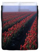 Rows Of Red Tulips Duvet Cover