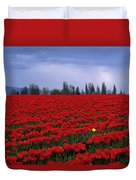 Rows Of Red Tulips With One Yellow Tulip  Duvet Cover by Jim Corwin