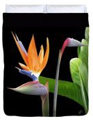 Royal Beauty II - Bird Of Paradise Duvet Cover by Ben and Raisa Gertsberg