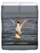 Royal Tern Duvet Cover