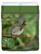 Ruby-crowned Kinglet Showing Crown Duvet Cover