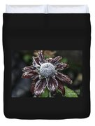 Rudbeckia First Frost Duvet Cover